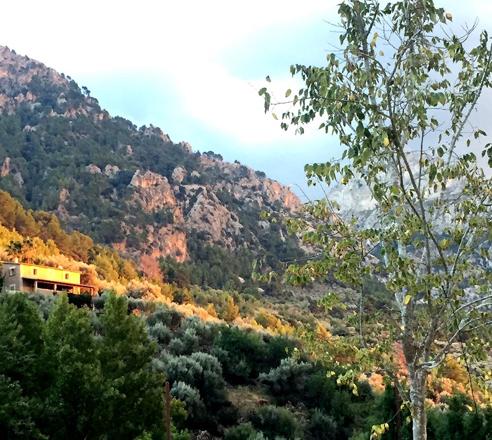 Landschaft Bergwelt Mallorca