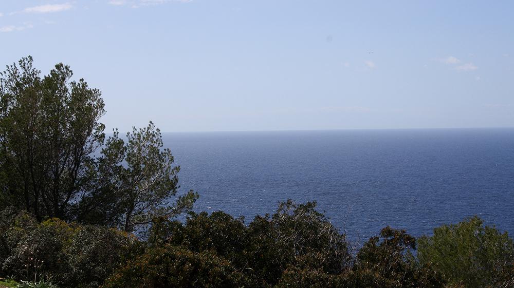 Muleta Soller Mallorca