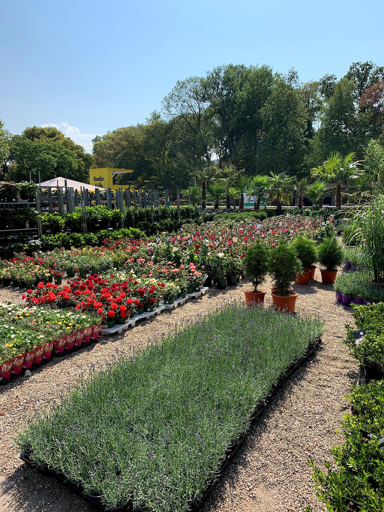 Home and Garden Gartenmarkt